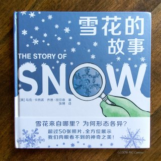 Story of Snow - Simplified Chinese edition