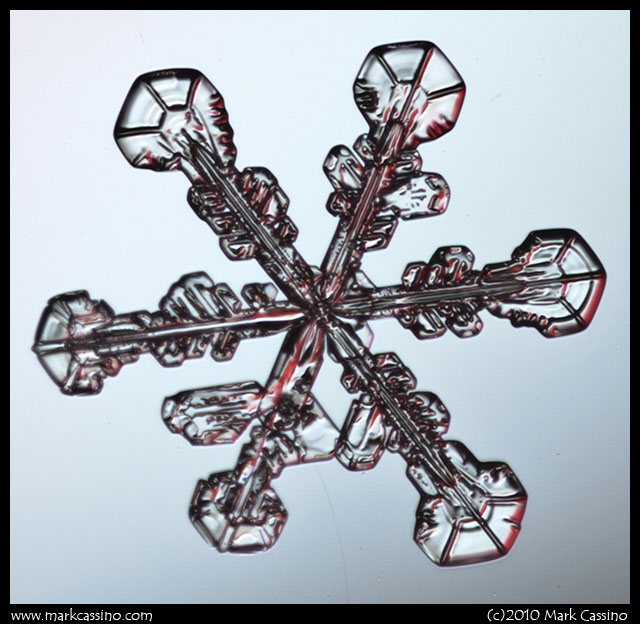 Photograph of a Snowflake