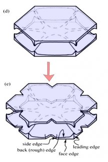 How some snow crystals hide their droplet origin