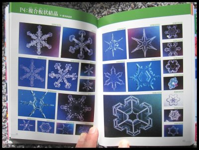 A complete picture book of all (known) snow types