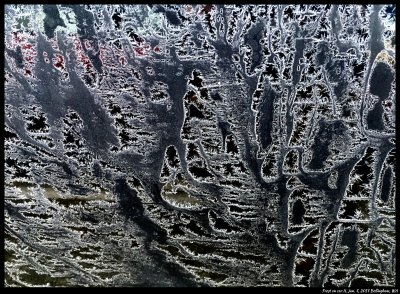 More frost patterns on black cars