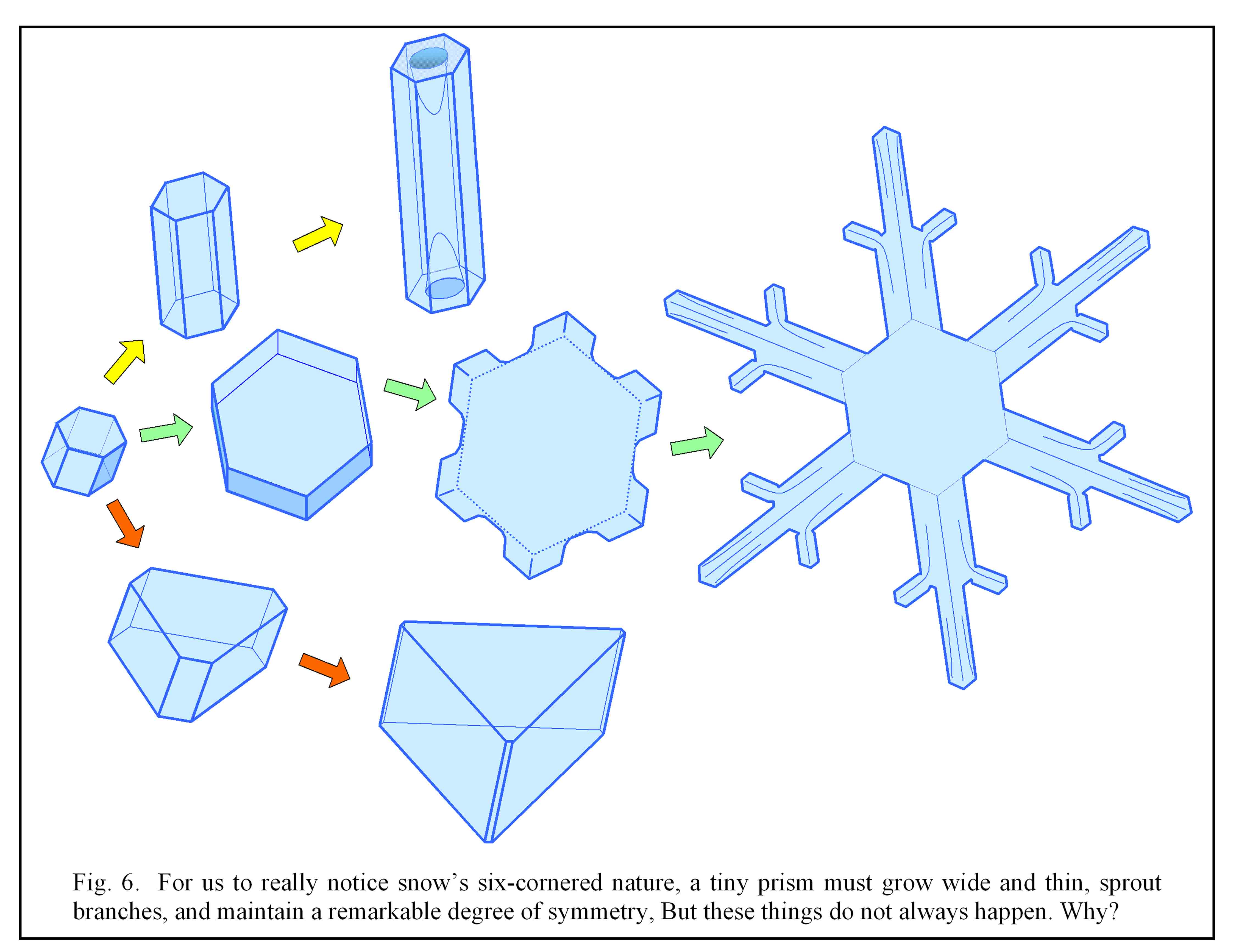 The Six-fold Nature of Snow