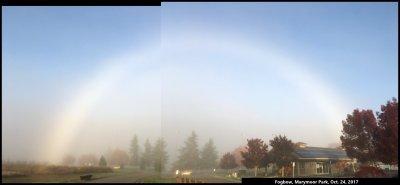 A Fogbow